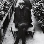 Ringo Starr in Chiswick Park